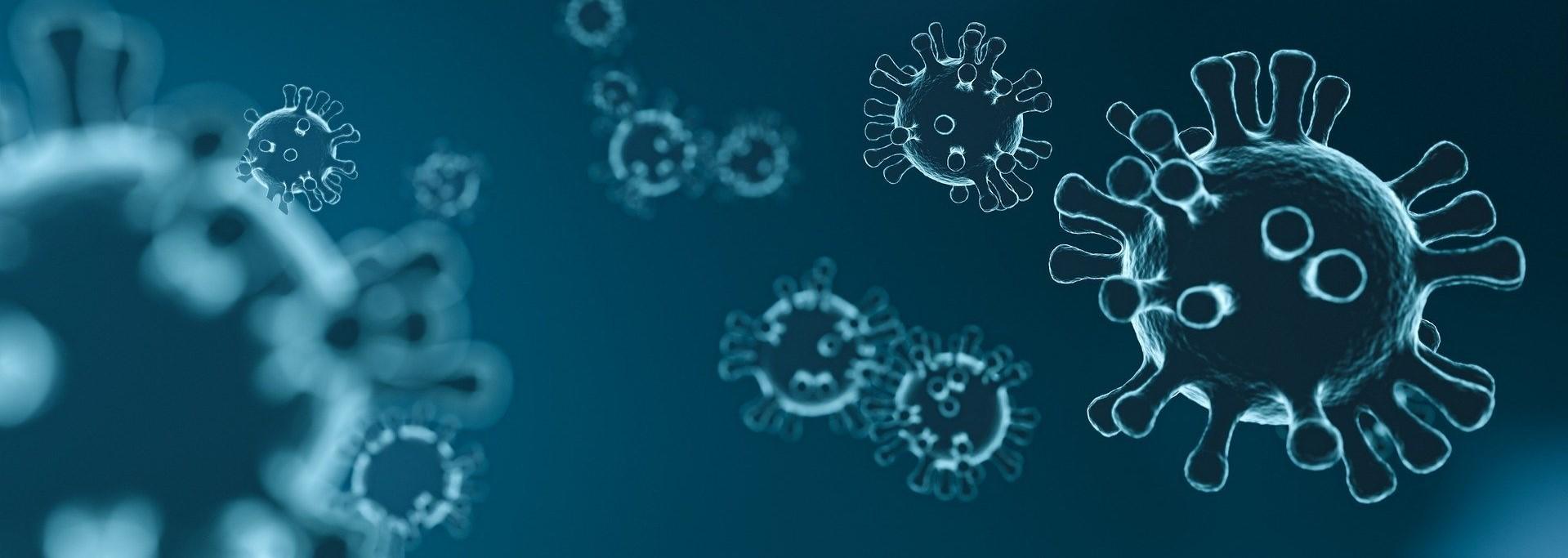 Web Información actualizada coronavirus